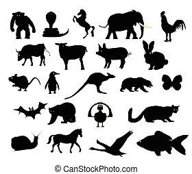 animais, silueta, cobrança