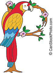 Animal Alphabet Parrot