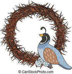 Animal Alphabet Q - A quail is sitting on a nest with her...