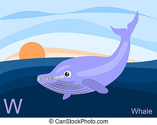 Animal alphabet, W for whale - This is part of the animal ...