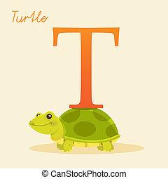 Animal alphabet with turtle
