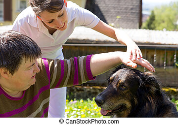 animal assisted therapy with a dog - animal assisted therapy...