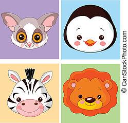 animal, avatars