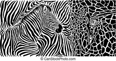 Animal background with zebra and giraffe motif