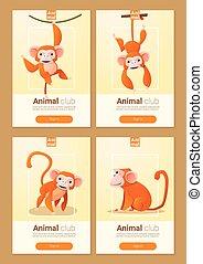 Animal banner with Monkeys for web design 1