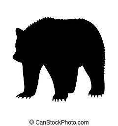 animal bear abstract