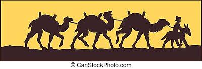 animal, camello