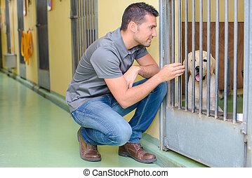 animal carer and a dog