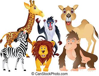 animal cartoon collection