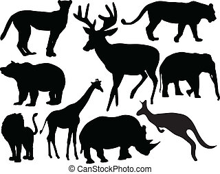 animal, collection, -, vecteur