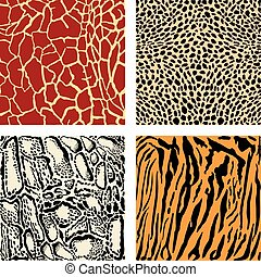 Animal color background