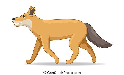 Coyote animal standing on a white background. Cartoon style vector illustration