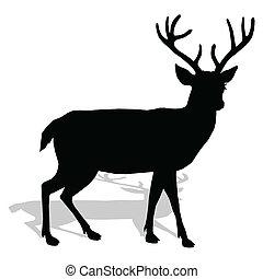 animal - deer, vector