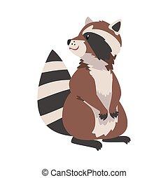 animal, dessin animé, forêt, rigolote, raton laveur, vecteur, mignon, sauvage, adorable, caractère, illustration