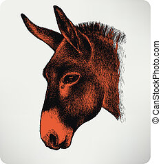 Animal donkey, hand-drawing. Vector illustration.
