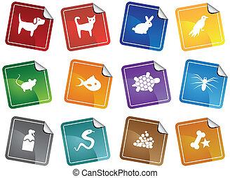 animal estimação, adesivo, jogo, loja, ícone