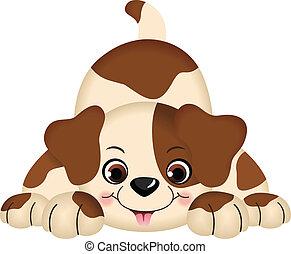 animal estimação, cão, tocando