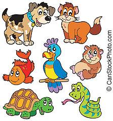 animal estimação, desenhos animados, cobrança
