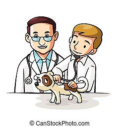 animal estimação, doutor