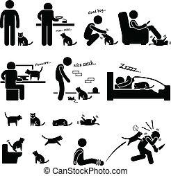 animal estimação, homem, relacionamento, gato