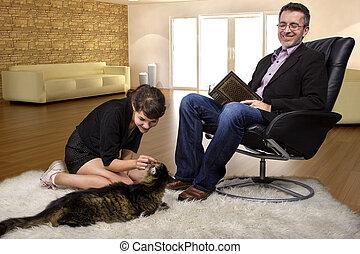 animal estimação, lar, família nova, gato