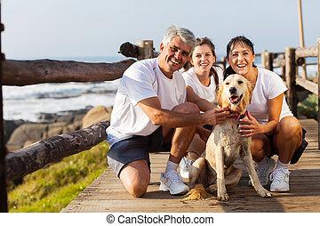 animal estimação, praia, sporty, cachorro familiar