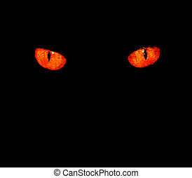 Animal eyes in black - Serious, evil animal eyes stare at...