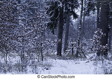 Animal feeder in a snow-covered forest