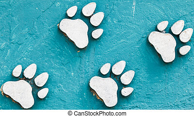 animal foot print on blue color cement.