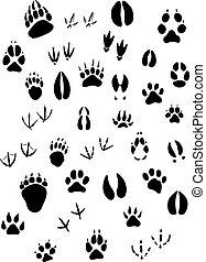 Animal footpints set - Big set of animal footprints include...