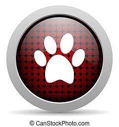 animal footprint glossy icon