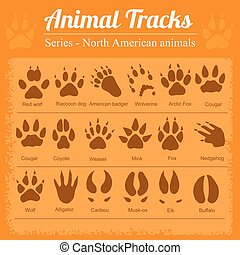 Animal Footprints - North American animals - Animals ...