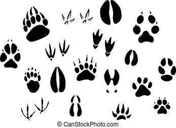 Animal footprints silhouettes - Animal - birds and mammals -...