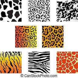 Set of animal fur and skin patterns for design