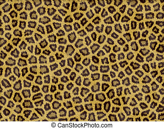 Animal fur - Colorful background made of animal fur