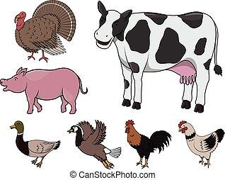 animal granja