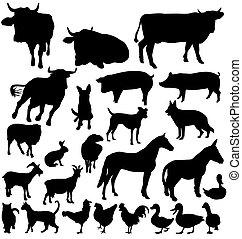 animal granja, siluetas, conjunto