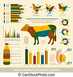 Animal husbandry infographics flat design elements of livestock and chickens vector illustration