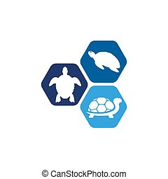 animal, icono, caricatura, tortuga