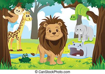 Animal kingdom - A vector illustration of wild jungle ...