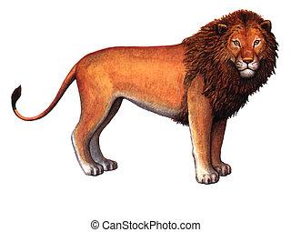 Couleur Vendange Paper Effect Lion Animal Dessin Eye