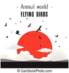 animal, mundo, voando, pássaros, nuvem, e, sol vermelho, fundo, vetorial, imagem