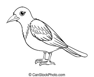 Animal outline for bird