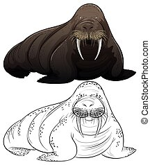 Animal outline for walrus illustration
