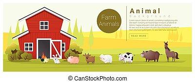 animal, paisaje, rural, plano de fondo, granja