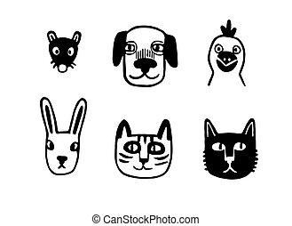 animal, rigolote, portraits