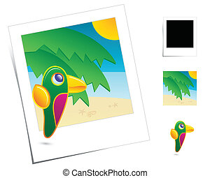 Animal Scene / Holidays Parrot - Parrot in season...