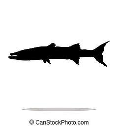 animal, silhouette, barracuda, fish, noir, aquatique