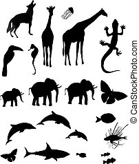 Animal Silhouette - Silhouetted shapes of various animals