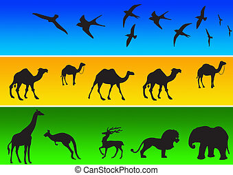 animal, siluetas, 1